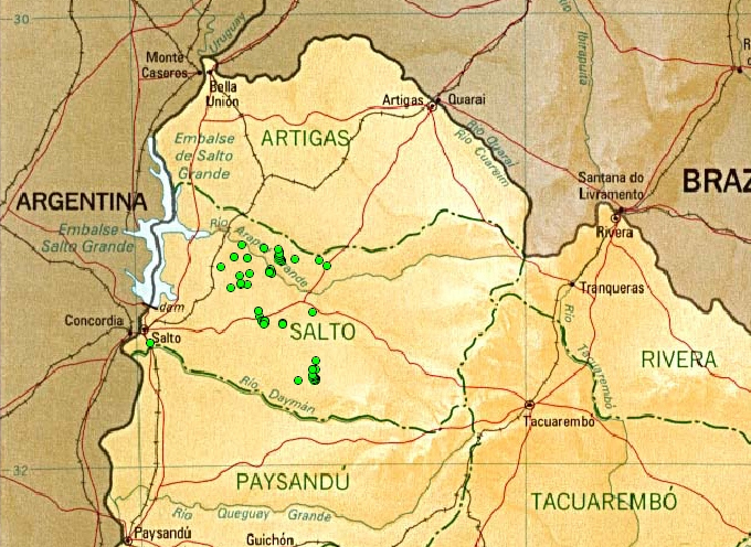 Petroglifos Salto